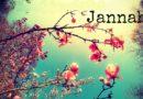 Nevjerovatnio: Ulazak u Džehennem skupo se plaća, a ulazak u Džennet je besplatan